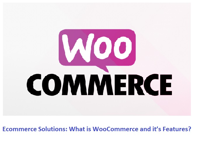Ecommerce Solutions: What is WooCommerce and it's Features?