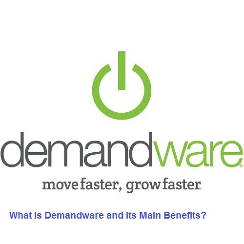 Demandware Commerce Services pune